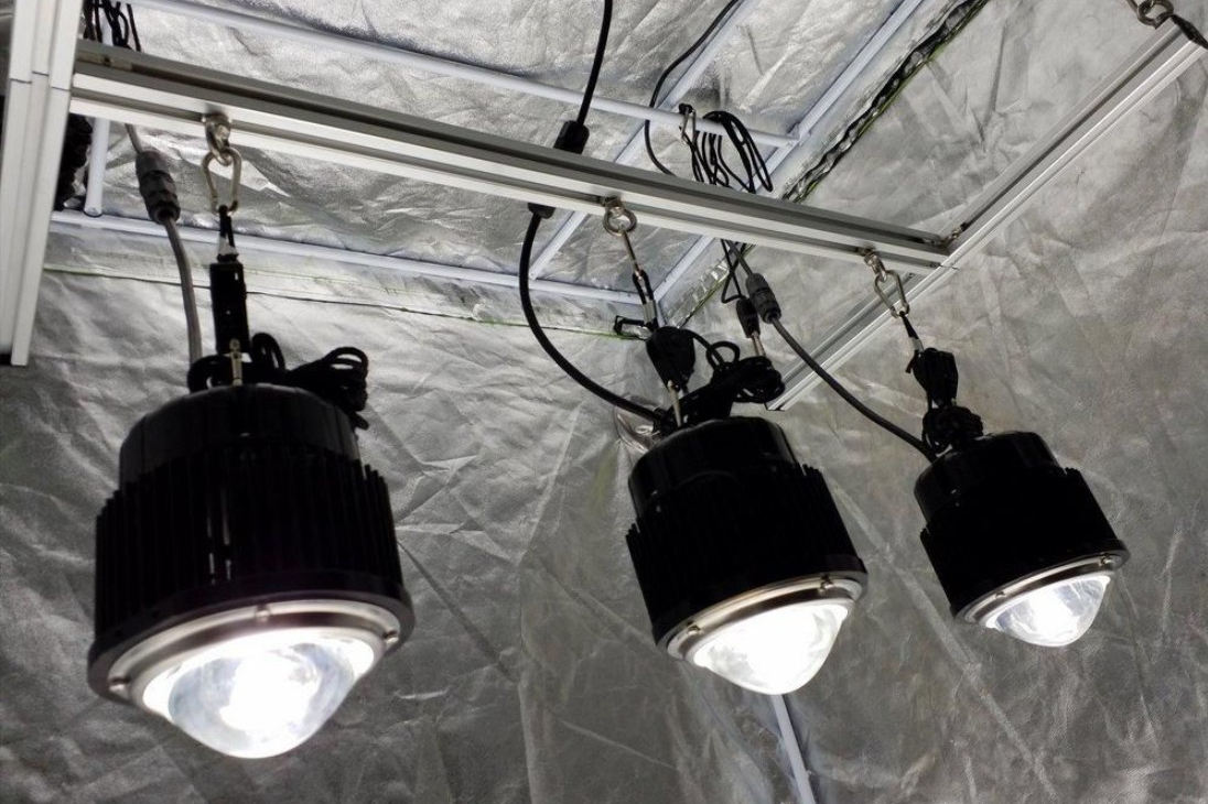 led grow light setup